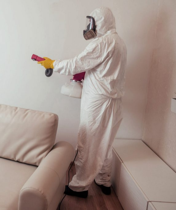 coronavirus-building-cleaning (1).jpg